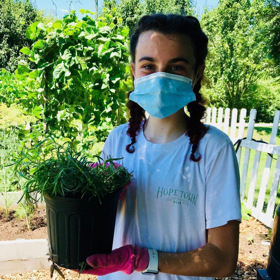 Volunteer in garden